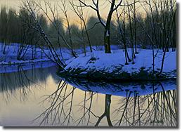 Image of painting titled Placid Pond by artist Alexei Butirskiy